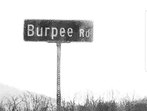 Burpe road